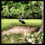 Sue's Tire Swing