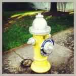 Julia's Hydrant