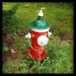 Sue's Hydrant