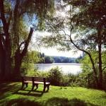 Sue's Pond