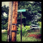 Sue's Street Sign
