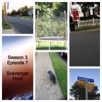 Tammy's Week 6 Collage