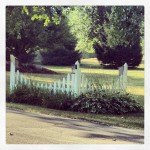 Theresa's White Picket Fence