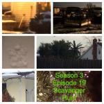 Tammy's Week 18 Collage